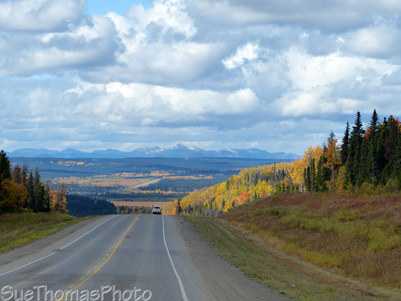 Fall colours on the Alaska Highway