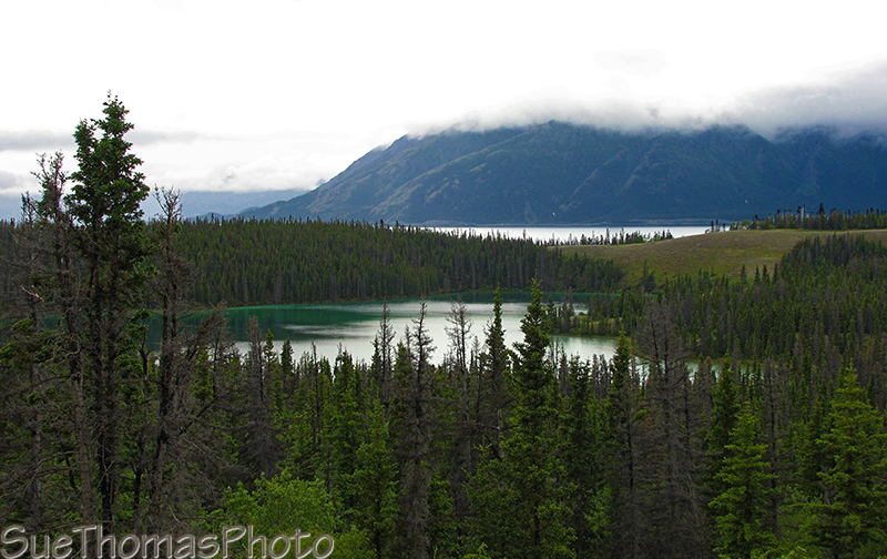 Kluane Lake east shore, Yukon