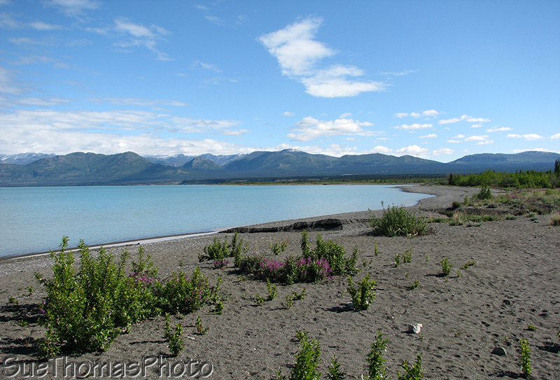 View of east shore of Kluane Lake from south shore, Yukon