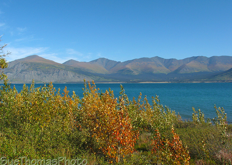 Kluane Lake - September 2009