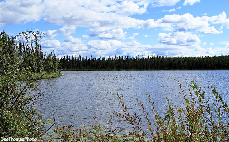 Unknown lake north of Watson Lake on the Alaska Highway