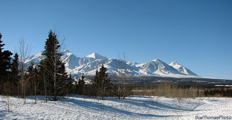 IMAGE: http://suethomas.ca/images/AlaskaHwy_YT/20110306_BearCk_143.jpg