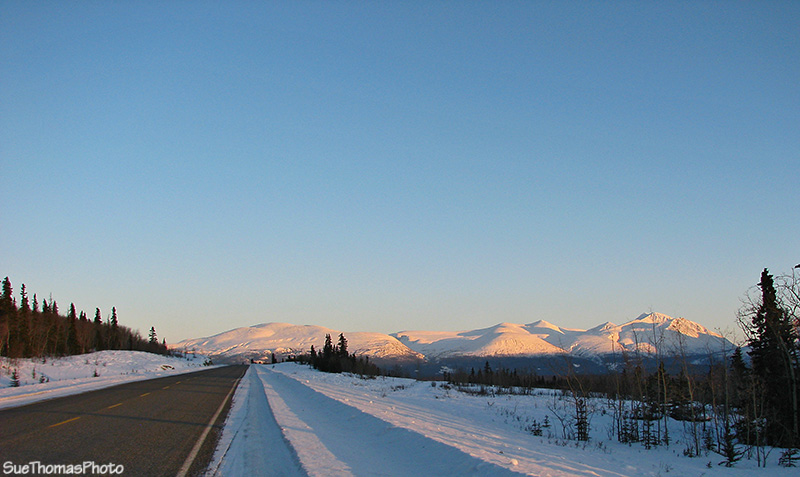 IMAGE: http://suethomas.ca/images/AlaskaHwy_YT/20110306_HJ-Wthrse_210.jpg