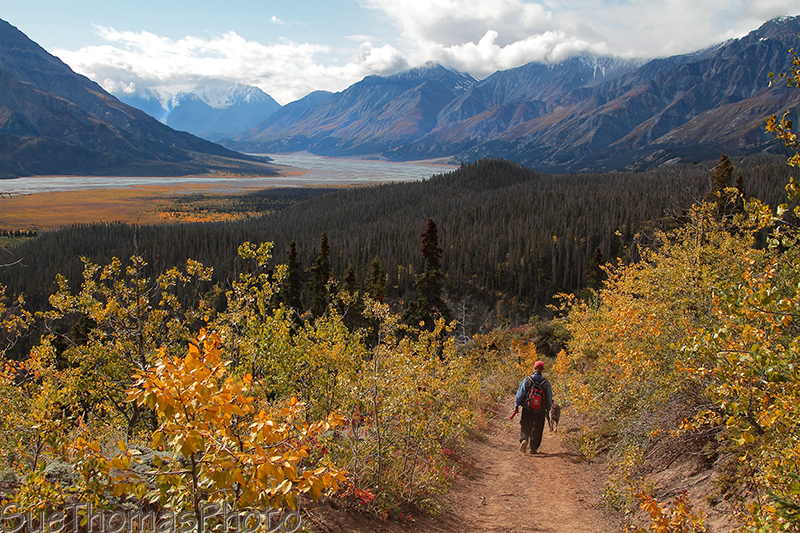 Hiking in Kluane National Park, Yukon