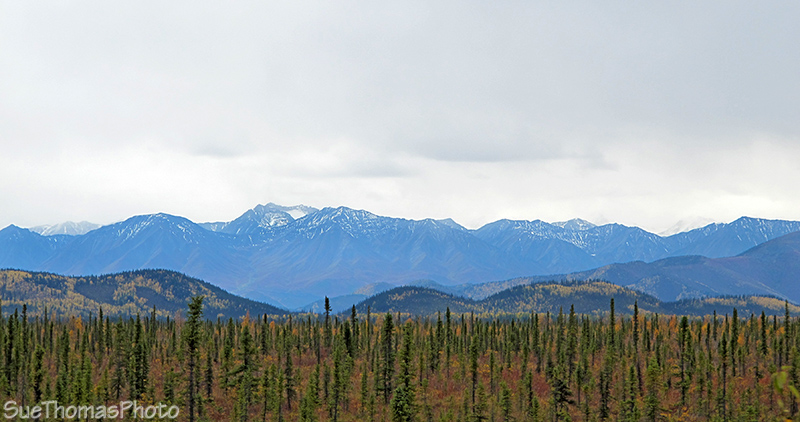 Wrangell-St. Elias Mountains