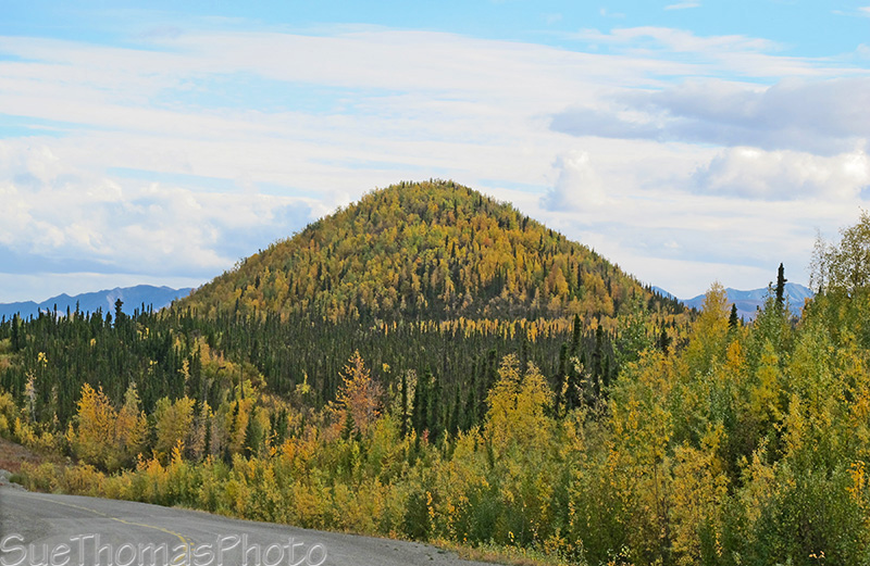 fall colours alaska highway