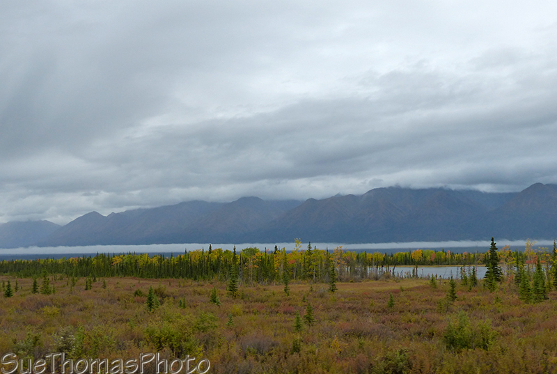 Looking west from the Alaska Highway