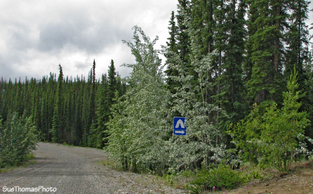 Road between Tatchun and Frenchman Lakes, Yukon