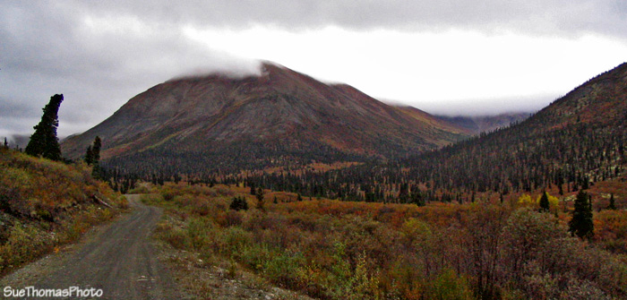 Road to Seagull Lakes, Yukon, near South Canol Road