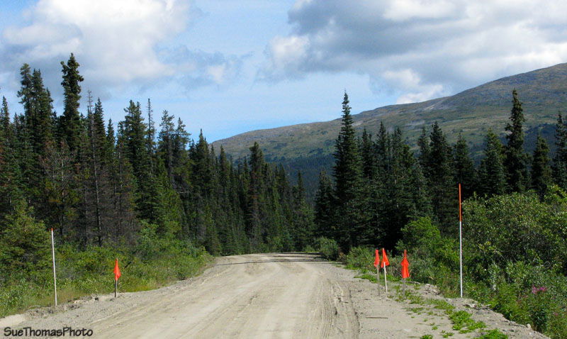 View northward on the South Canol Rd at km 14