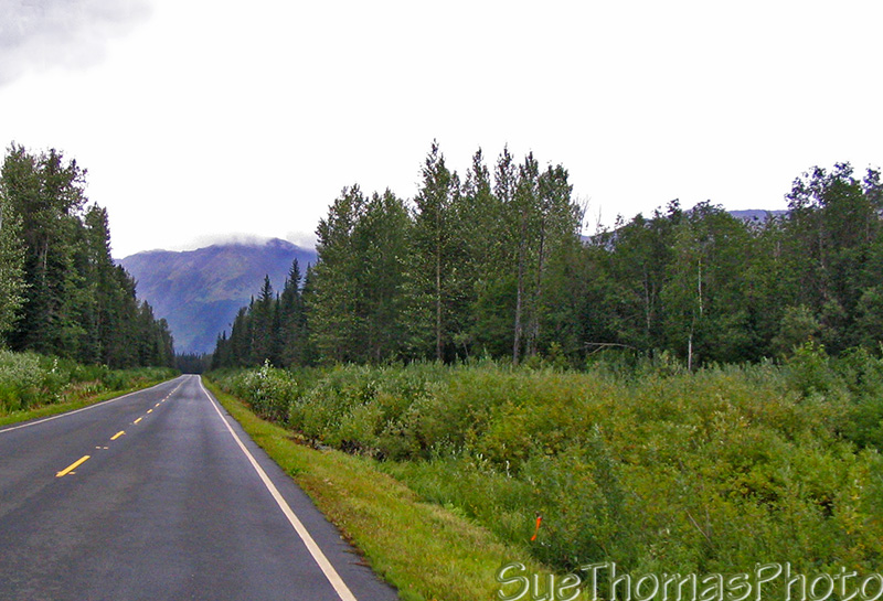 Cassiar Highway north of Meziadin Lake