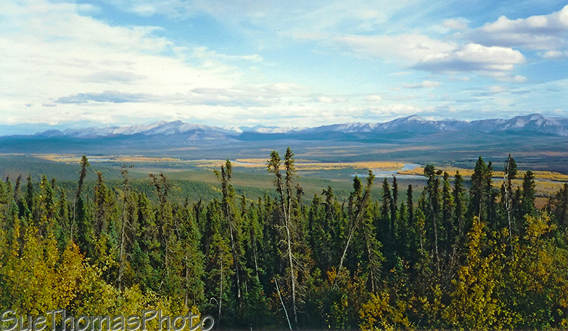 Camping in Yukon and Alaska