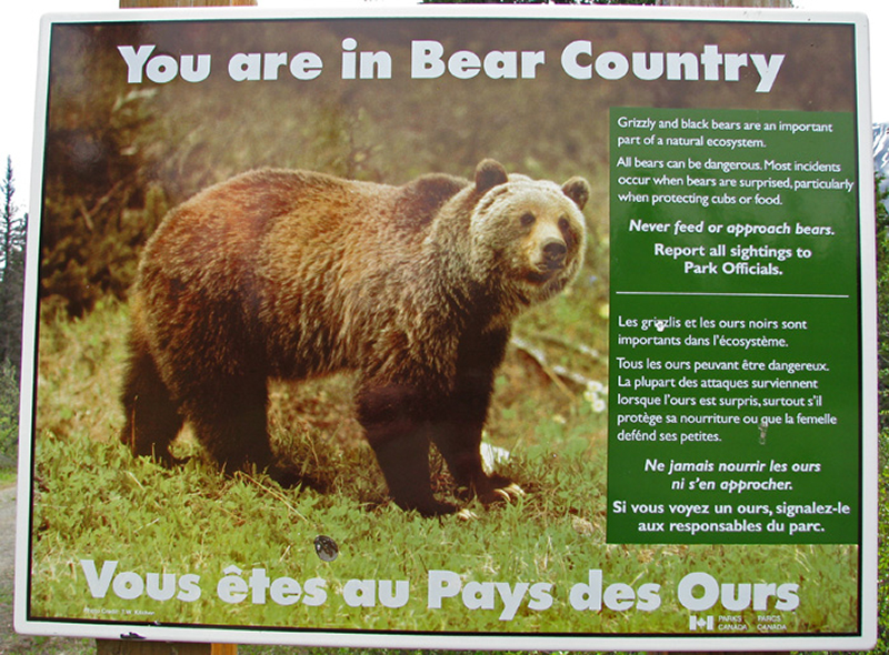 Grizzly bear warning at Kluane Park & Kathleen Lake