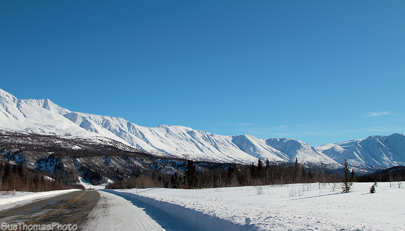 Looking south on the Haines Highwat near Klukshu