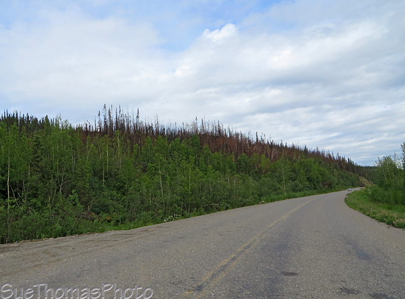 North Klondike Highway with recent forest fire