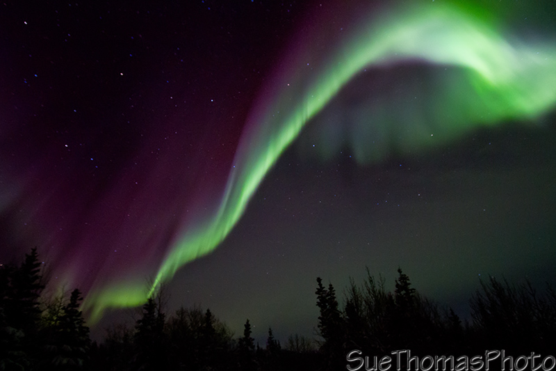 Aurora & Northern Lights