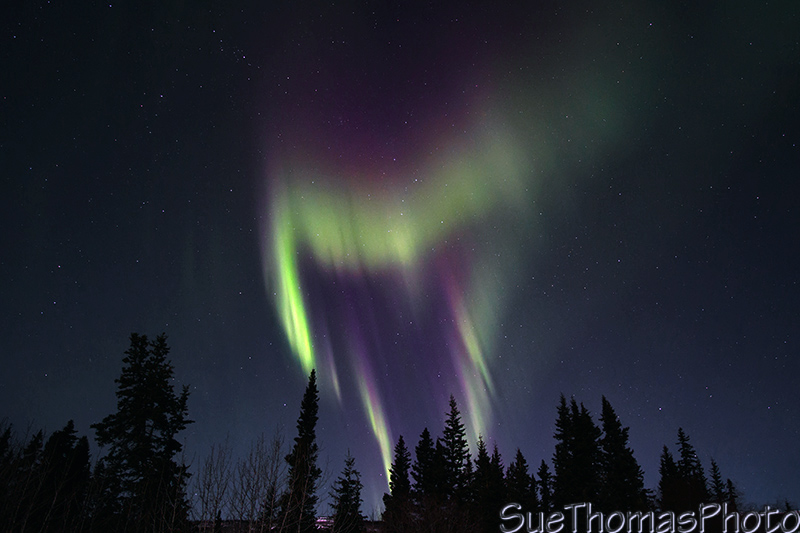 Northern Lights in March