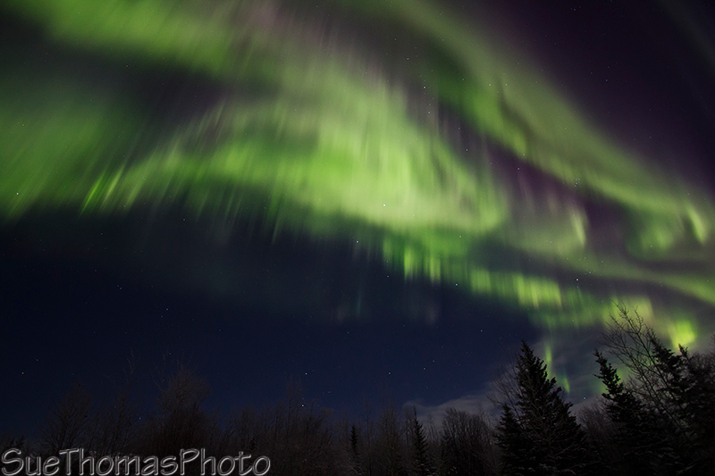 Aurora in December - Yukon