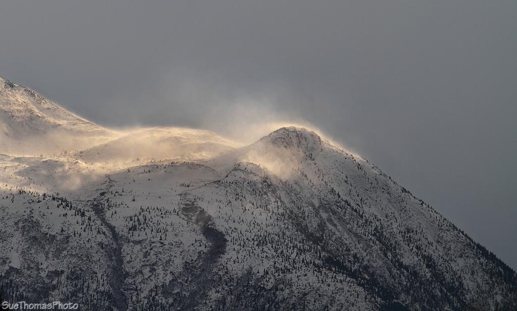 IMAGE: http://suethomas.ca/images/Yukon/Winter/20130210_StonyCk_57.jpg