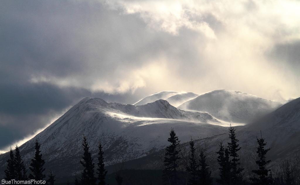 IMAGE: http://suethomas.ca/images/Yukon/Winter/20130210_StonyCk_64.jpg