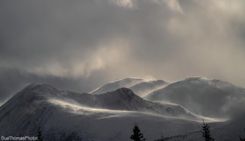 IMAGE: http://suethomas.ca/images/Yukon/Winter/20130210_StonyCk_65.jpg
