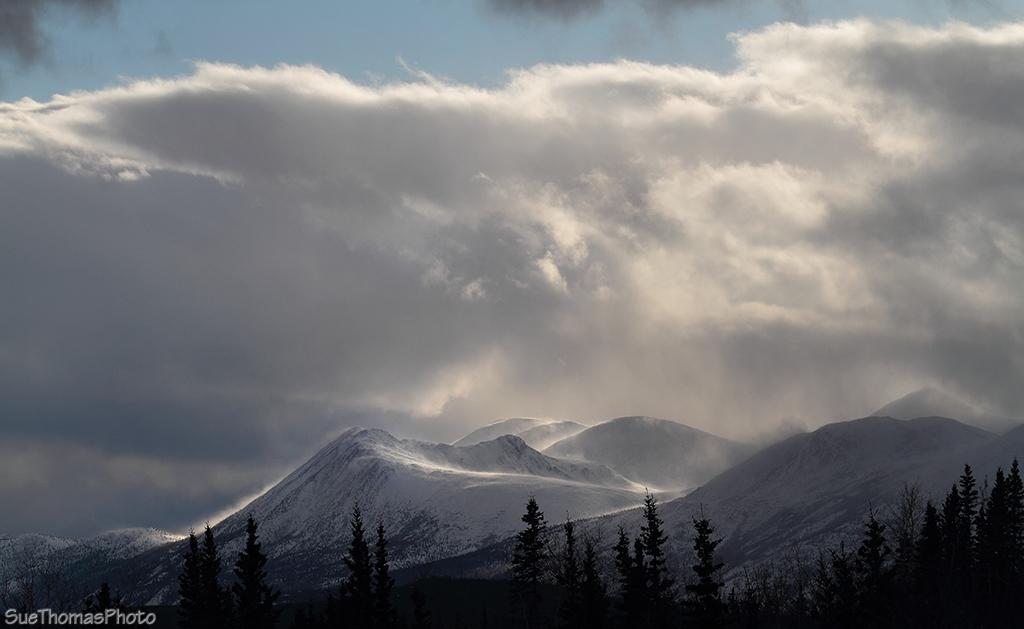 IMAGE: http://suethomas.ca/images/Yukon/Winter/20130210_StonyCk_67.jpg
